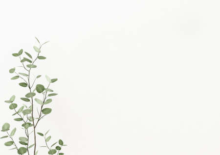 Plant branch with green leaves on empty white wall background. 3D rendering, illustration.