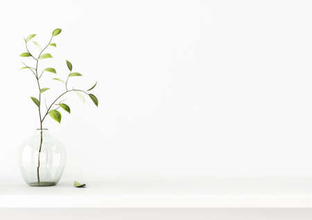 Interior wall mockup with green tree branch in vase standing on the shelf on empty white background with free space. 3D rendering, illustration.
