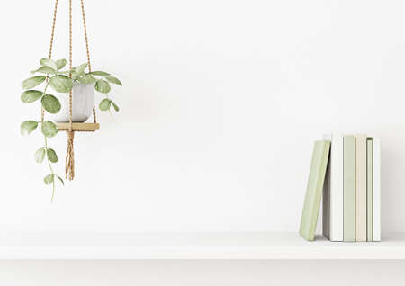 Interior wall mockup with green plant in hanging pot and books on the shelf on empty white background with free space on center. 3D rendering, illustration. Imagens