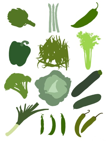 set of green vegetables consisting of artichoke, asparagus, long pepper, pepper, green beans, celery, broccoli, cabbage, zucchini, cucumber, leek, peas, green hot pepper Stock Photo - 18657244