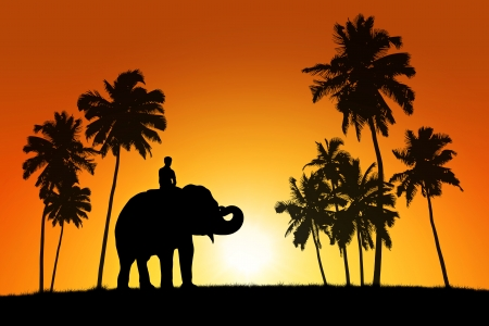 realistic black silhouette of asian elephant with the rider among coconut trees on tropical sunset background photo