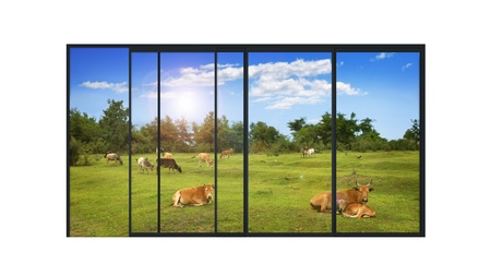 panoramic sky: isolated panoramic 4 parts sliding modern aluminum window  with a rural landscape and farm animals