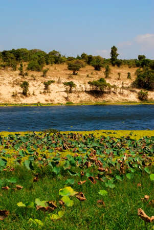 the river in Vietnam photo