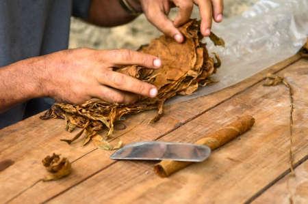 making of cuban cigar photo