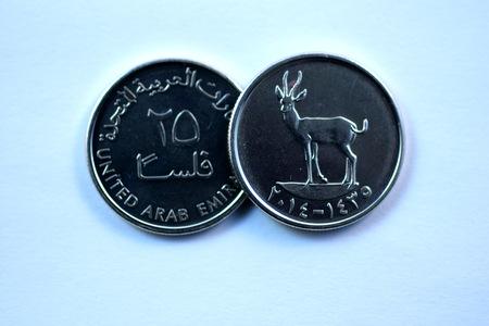 united arab emirates: Close up Dirhams currency, United arab emirates Stock Photo