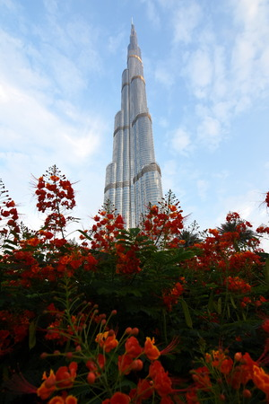 tallest: Dubai, United Arab Emirates - April 4, 2016: Burj Khalifa, the tallest man made Building in the world, photo taken in the Dubai downtown area and Burj Khalifa Garden