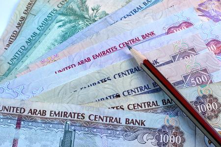 united arab emirates: Close up Dirhams currency, United Arab Emirates