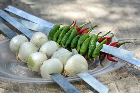 iranian: Iranian chicken Barbecue with onion and chilly  in the park