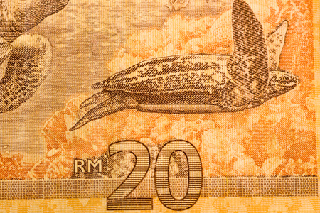 one hundred dollars: Close up Malaysia Ringgit currency note RMY
