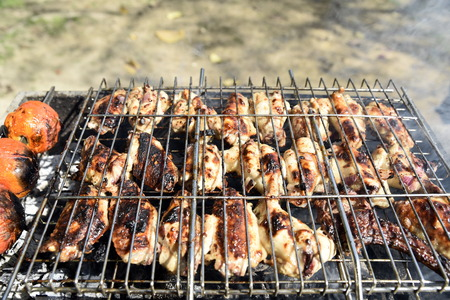 Iranian styleBarbecue with onion and Tomato in the park