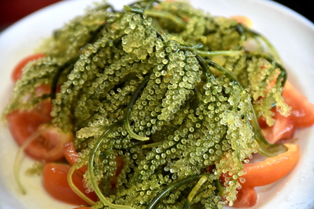 Close-up natural Seaweed with Tomato in the white plate Stockfoto
