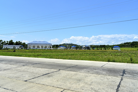 Around the Santiago City, Isabela, Philippines, Santiago City Sightseeing , Rice Field, one of major cities of rice procedures in the Philippines