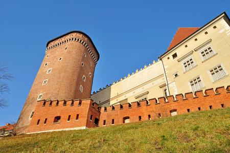 wawel: Wawel Royal Castle Editorial
