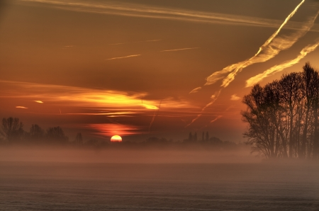 springbreak: Morning sun