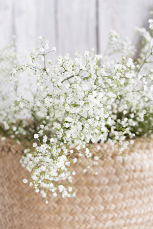 Soft home decor, small vases with baby's breath bouquet. Interior. Stockfoto