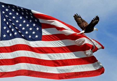Photo of the American flag with an Eagle flying past