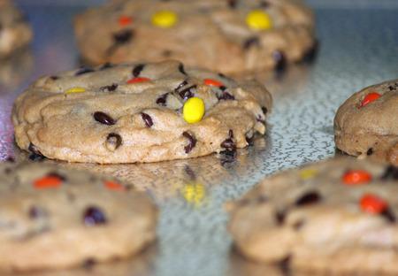 cookie sheet: Cookie sheet of warm cookies