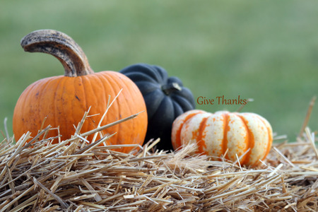 \\\Give Thanks\\\ written above the last of three pumpkins on a hay bale