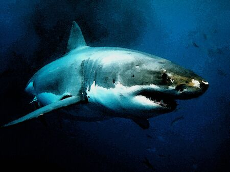 Great White Shark is an apex predator and amazing underwater creatures in the watercolour picture