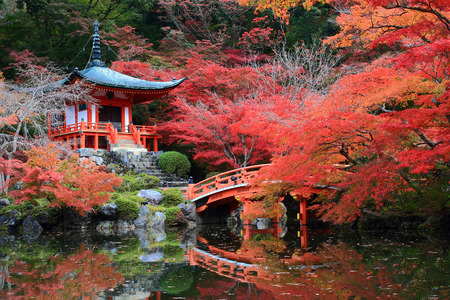japanese fall foliage: Japanese Red Pavilion in the Autumn