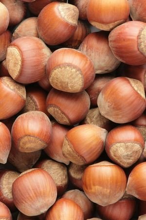 background of disorderly numerous ripe brown brhazelnuts Stock Photo - 8174324