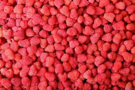 entire: ripe red raspberries close-up fill entire frame