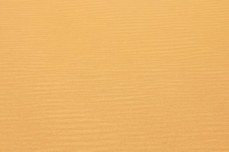 Textured wavy yellow sand all over the frame Stock Photo - 16268583