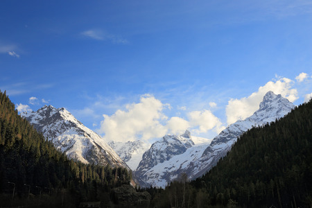 dombay: panorama of Dombay mountains behind forest under blue sky Stock Photo