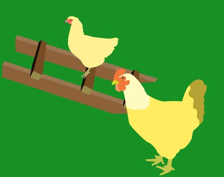 Two hens in a hen house.Vector.Without mesh. Stock Vector - 4363636