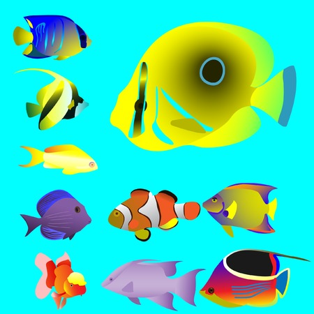 Ten bright oceanic small fishes. Vector. Without mesh.