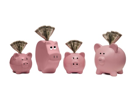 Here is a great concept for finding different ways of saving by using different kinds of piggy banks with money in the slot of each one   Isolated on white  Notice shadows under each pig and focus on front middle pigs