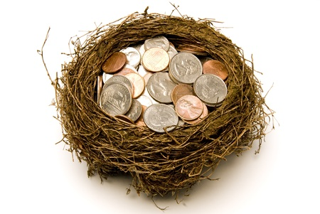 global retirement: Nest full of money for savings   Everyone tries to have a little bit of savings   Isolated   Studio shot