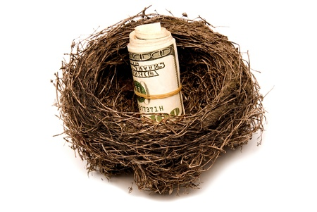 A bundle of money stored in a nest for retirement   Isolated   Studio shot  Stock Photo
