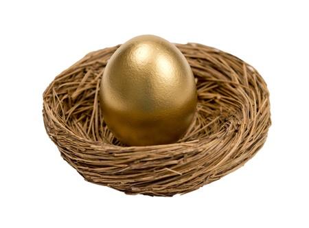 Golden Egg In Nest Isolated On White