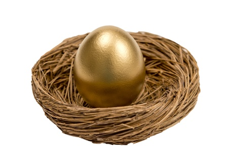accrue: Golden Egg In Nest Isolated On White