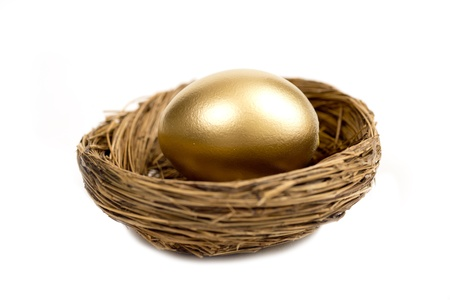 accrue: Golden Egg Laying In Nest Isolated On White With Shadow