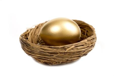 fondos negocios: Huevo de oro que pone en Nido Aislado En Blanco Con Sombra