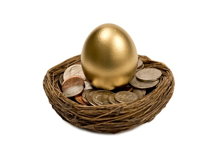 accrue: Golden Egg Standing Up In Nest Of Money Isolated On White Stock Photo
