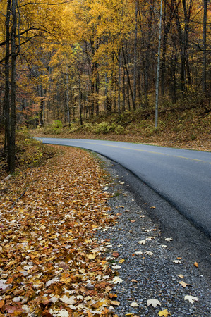 great smoky national park: Road in Autumn