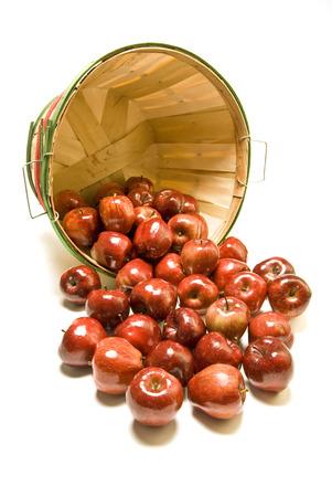 bushel: Apples Spilled From Bushel Basket