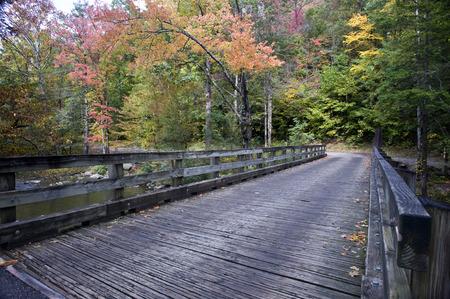 Wooden Bridge in the Fall photo