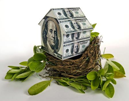 Residential Nest Egg Concept