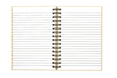 ruled: Blank Ruled Opened Notebook