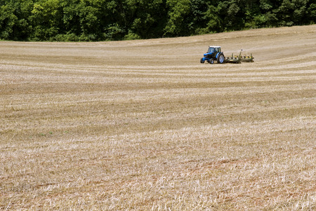 seeding: Tractor Seeding Field For Summer