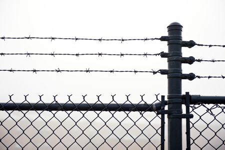 Wet Barbed Wire Fence In Dense Fog