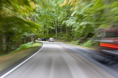 Motion blur caused from speeding through the forest