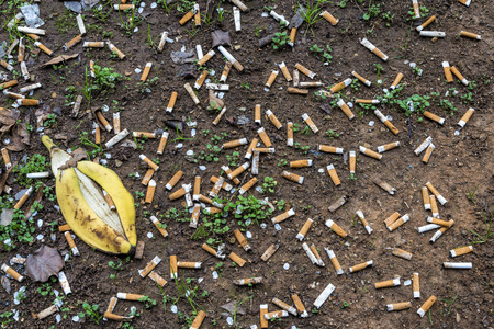 Horizontal shot of Cigarette Butts and a banana peel Littering the Ground Near a Busy Airport.