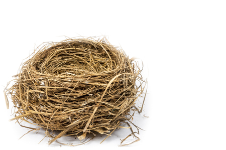 Horizontal side view of an empty bird's nest in the lower left hand corner of the shot.  White background.  Copy space.