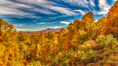 Horizontal shot of some of the Smoky Mountains Autumn beauty under a blue sky with white clouds.