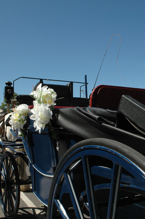 honeymoons: traditional horse-drawn bridal carriage Stock Photo